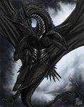 21648Dark_Dragon_RPC