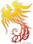 phoenix_dragon_phoenix_by_nachtwulf_22938